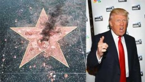 trump-star-vandalised-small