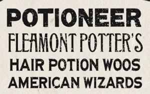 fleamont-potter