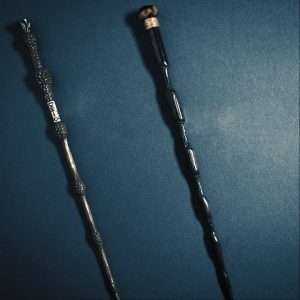 Crimes of grindelwald group portrait is it a meaningful for Grindelwald s wand