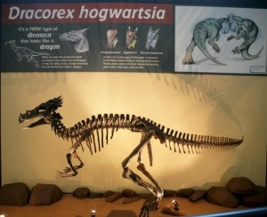 dracorexdisplay_small